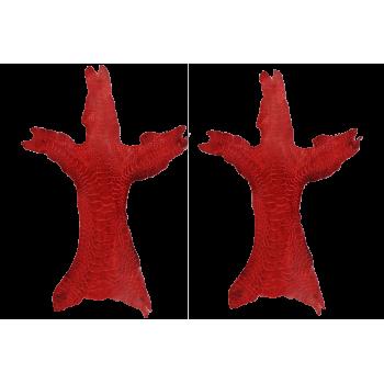 Patte de poulet rouge